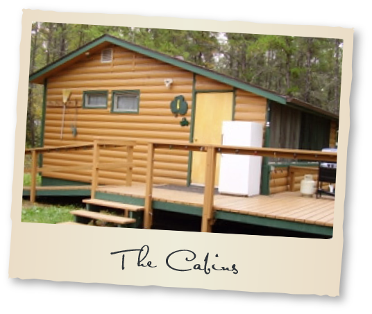 The Cabins at Tobin Lake Fishing Vacation Rentals Nipawin Regional Park Saskatchewan Canada