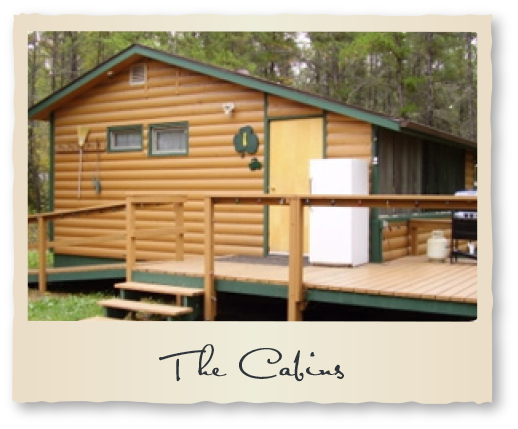 The Cabins at Reel 'em Inn Cabins Tobin Lake Fishing Vacation Rentals Nipawin Regional Park Saskatchewan Canada